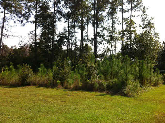 Residential Lots - Summerdale, AL (photo 1)