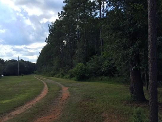 Corner - Robertsdale, AL (photo 2)