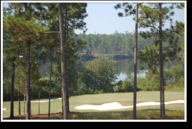 Residential Lots - Loxley, AL (photo 4)