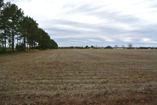 Land - Elberta, AL (photo 1)