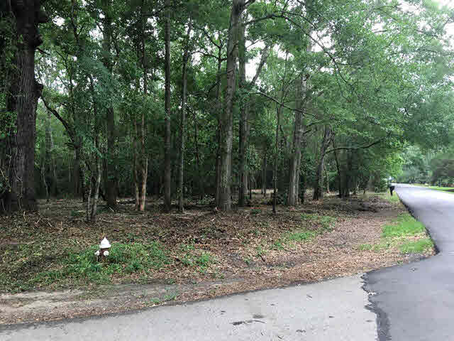 Residential Lots - Mobile, AL (photo 1)