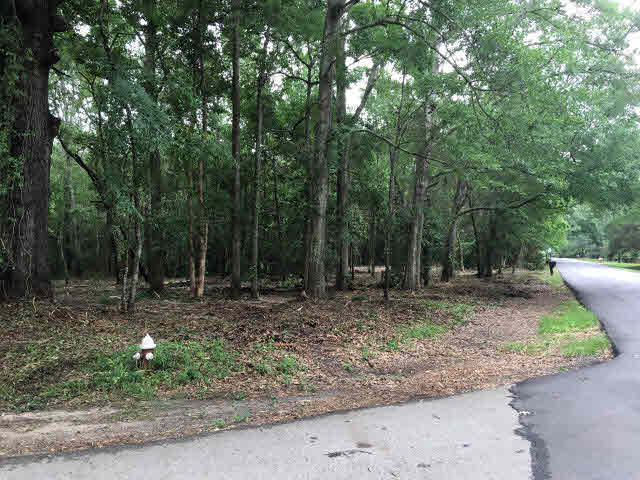 Residential Lots - Mobile, AL (photo 2)