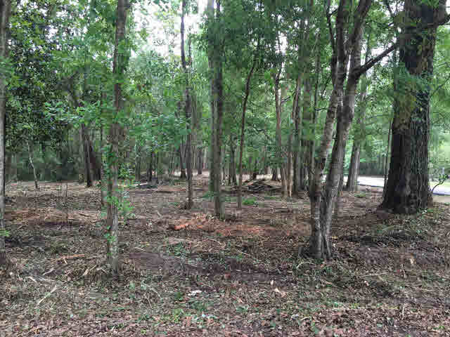Residential Lots - Mobile, AL (photo 3)