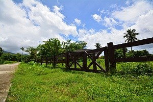 Blk 3 Lot 7 Rancho District, Hacienda San Benito,, Lipa City - PHL (photo 3)