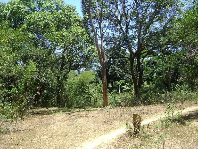 L4934  Brgy. Pantay Dalig ,, Teresa - PHL (photo 1)