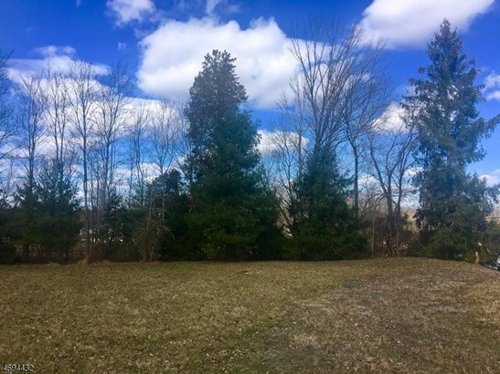 94 Marsh Cor Woodsvl Rd, Hopewell, NJ - USA (photo 2)