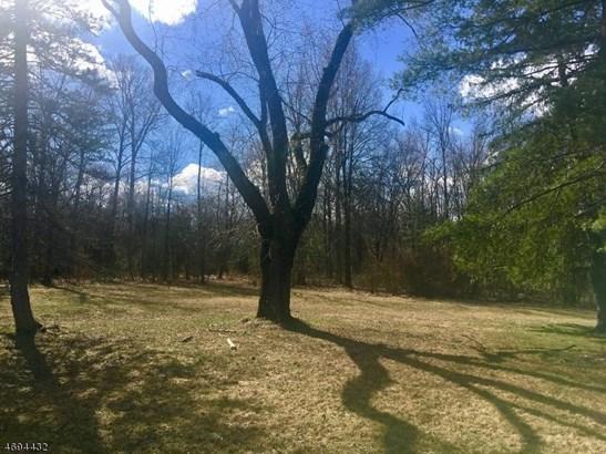 94 Marsh Cor Woodsvl Rd, Hopewell, NJ - USA (photo 4)
