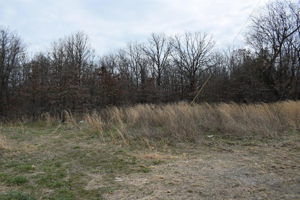 Residential - Galena, KS (photo 3)