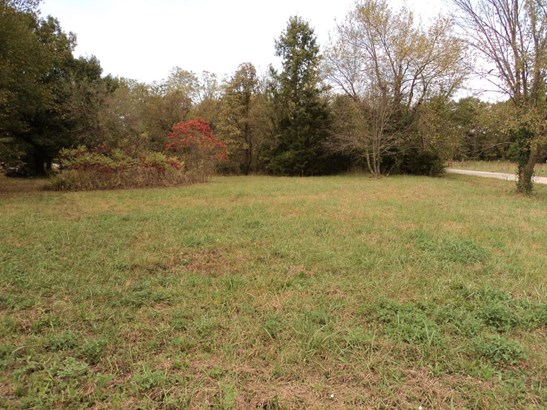 Residential - Granby, MO (photo 1)