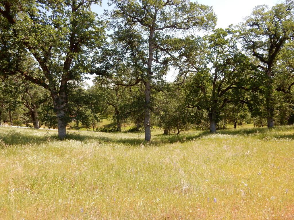 Acres - Redding, CA (photo 1)