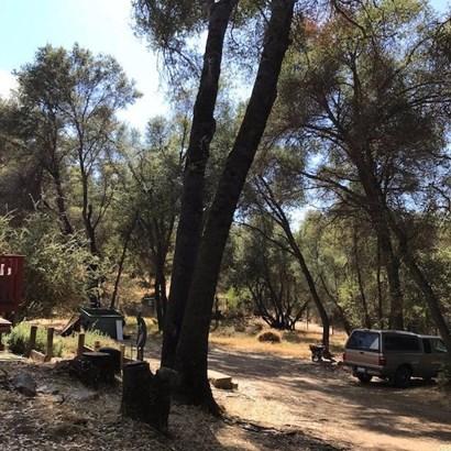 50022 Daisy Lane, Oakhurst, CA - USA (photo 3)