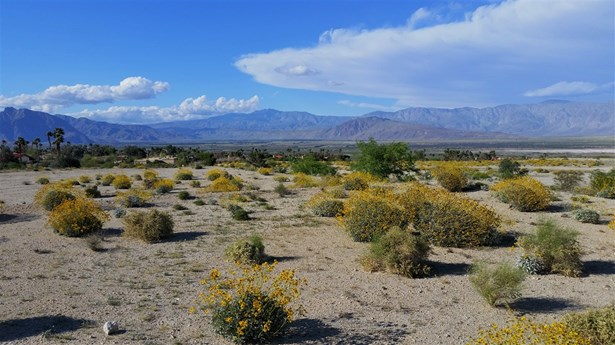 Lots/Land - BorregoSprings, CA (photo 1)