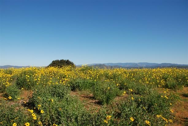 Lots/Land - Escondido, CA (photo 3)