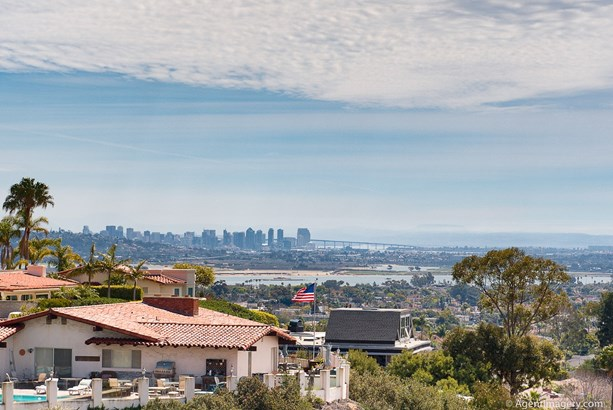 Contemporary, Detached - San Diego, CA (photo 4)