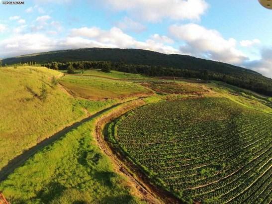 Vacant Land - Kula, HI (photo 2)