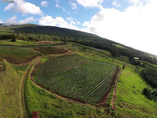 Vacant Land - Kula, HI (photo 3)