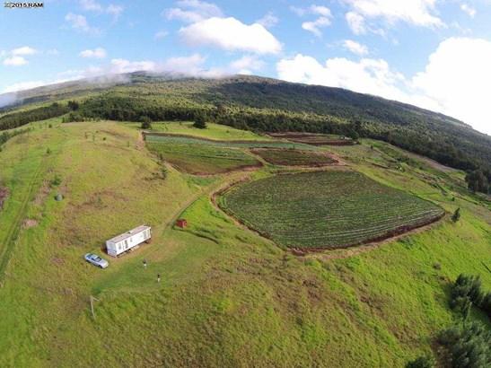 Vacant Land - Kula, HI (photo 5)