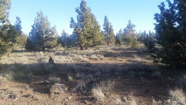 5728 Southwest Mt. Jefferson, Powell Butte, OR - USA (photo 5)