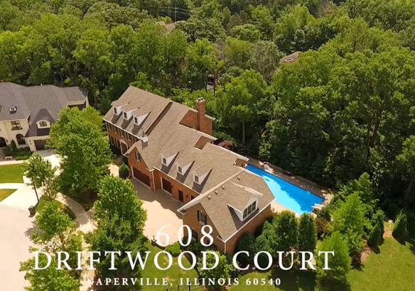 608 Driftwood Court, Naperville, IL - USA (photo 1)