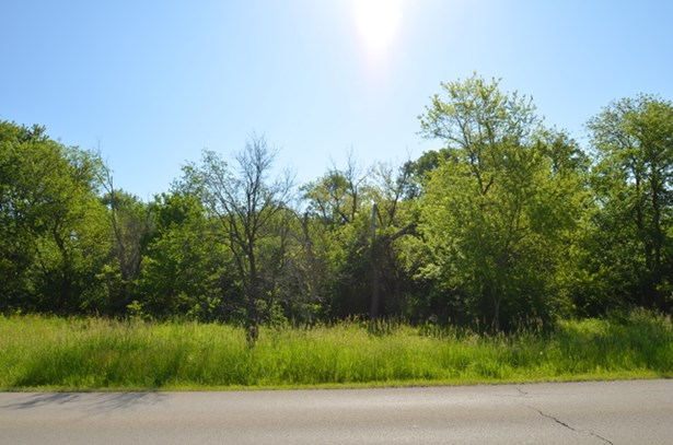360 Tamarack Street, Park Forest, IL - USA (photo 2)