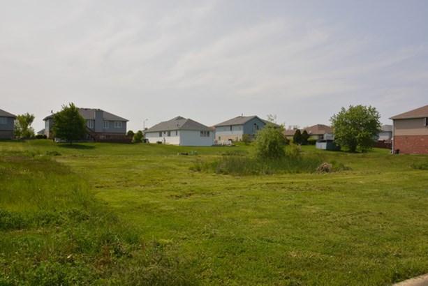 26156 South Eagle Drive, Monee, IL - USA (photo 4)