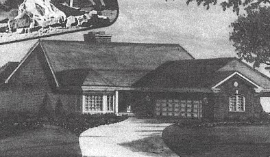 13423 Wood Duck Drive, Plainfield, IL - USA (photo 1)