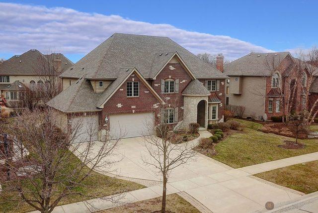 507 Eagle Brook Lane, Naperville, IL - USA (photo 2)