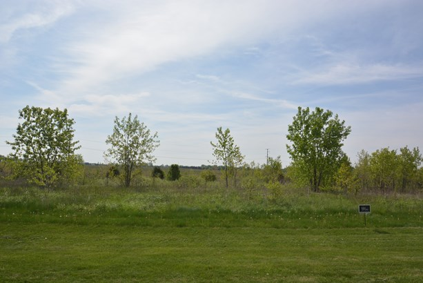 26704 South Wildgrass Turn, Monee, IL - USA (photo 1)