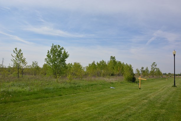 26704 South Wildgrass Turn, Monee, IL - USA (photo 4)