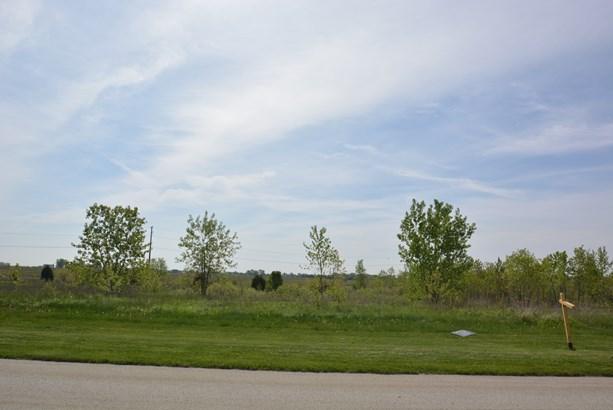 26704 South Wildgrass Turn, Monee, IL - USA (photo 5)
