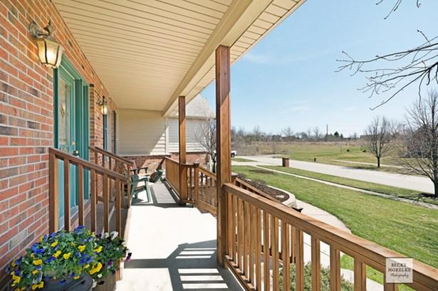 403 Meadow Rose Lane, Yorkville, IL - USA (photo 2)