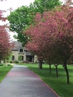 1690 Cherry Road, Oswego, IL - USA (photo 2)