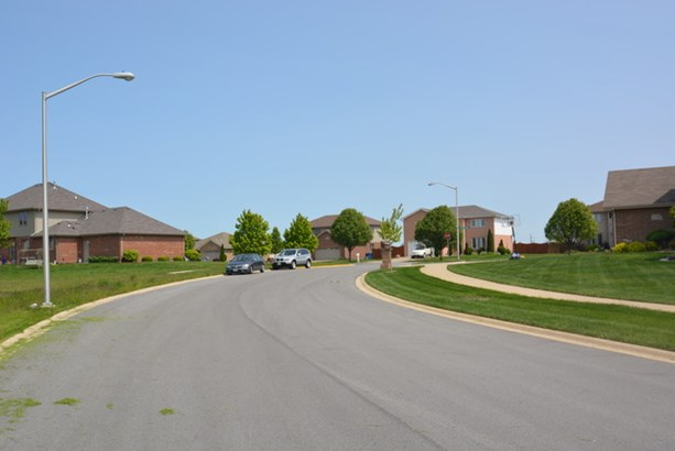 26156 South Eagle Drive, Monee, IL - USA (photo 3)