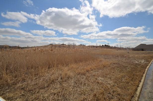 25101 South Tuscany Drive, Monee, IL - USA (photo 5)