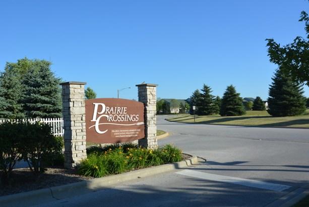 321 Pine Street, Beecher, IL - USA (photo 5)
