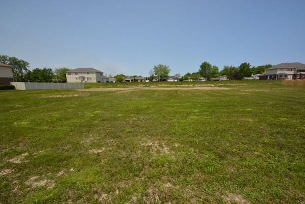 4978 West Hawk Lane, Monee, IL - USA (photo 2)