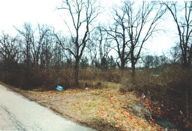 557 North Railroad Street, Braidwood, IL - USA (photo 1)