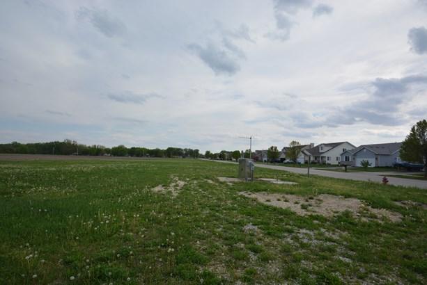 00 West Cermak Road, Braidwood, IL - USA (photo 3)