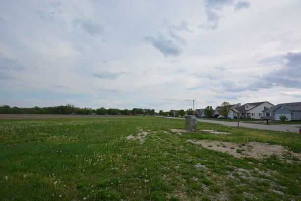00 West Cermak Road, Braidwood, IL - USA (photo 4)