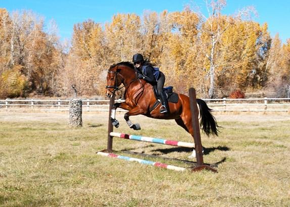 Ranch, 2 Story - Hailey, ID