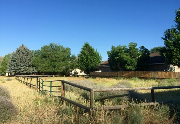 Residential Land - Bellevue, ID (photo 2)