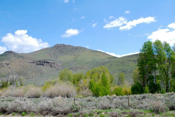 Residential Land - Carey, ID (photo 4)