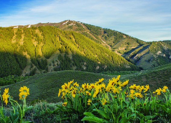 Residential Land - Sun Valley, ID (photo 1)