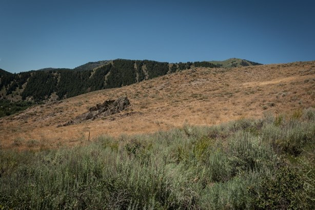 Residential Land - Sun Valley, ID (photo 3)