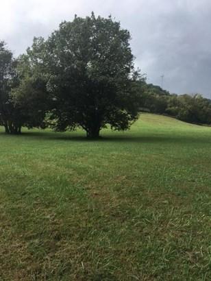 Unimproved Tract - Nashville, TN (photo 2)