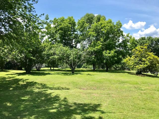 Residential Lot - Watertown, TN (photo 1)