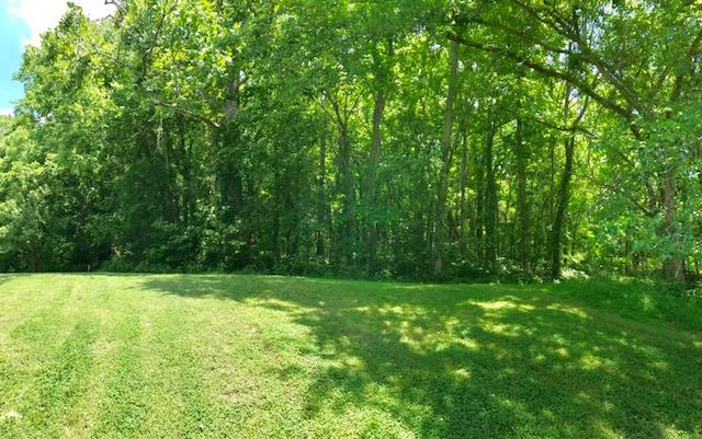 Residential Lot - Watertown, TN (photo 2)