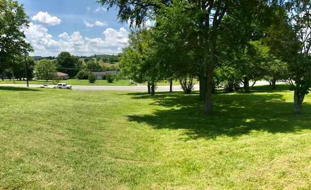 Residential Lot - Watertown, TN (photo 3)