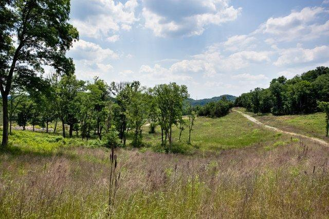 Unimproved Tract - Brentwood, TN (photo 5)