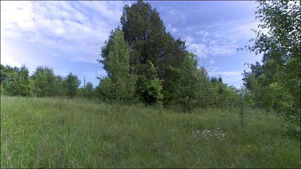 Residential Lot - Goodlettsville, TN (photo 4)
